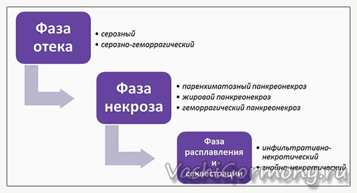 воспаление поджелудочной железы - фазы (схема)